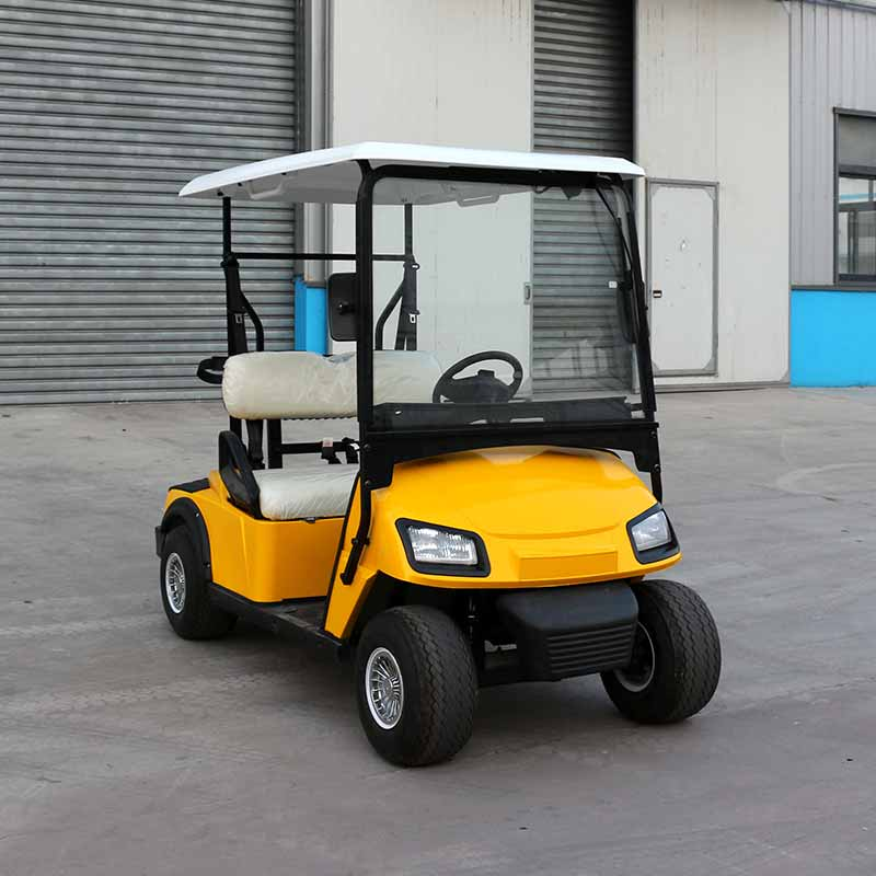 Electric Golf Carts L2 Yellow